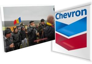 chevron - pungesti