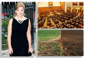 comisie nana parlament