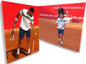 victor hanescu brd tenis 2014