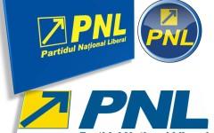 PNL a depus la Camera Deputaților, o nouă moțiune simplă la adresa Guvernului Ponta