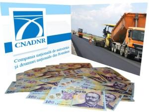 cnadnr - despagubiri
