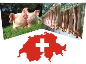 import carne porc in elvetia