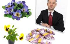 Robert Negoiță cheltuie 112 milioane de euro pe panseluțe în Sectorul 3