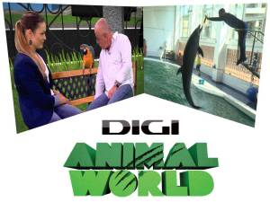 digi animal world - emisiune