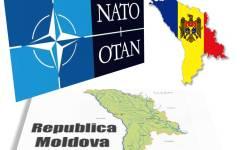 Dungaciu: Singura variantă pentru securitatea Republicii Moldova este aderarea la NATO