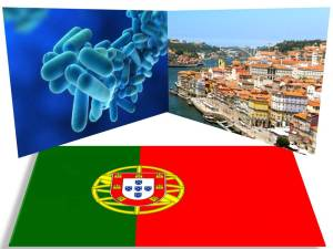 Bacteria Legionella Pneumophila - portugalia