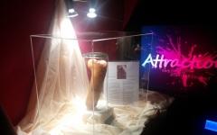 Penisul lui Terente, cel mai dotat român din istorie, expus într-un club de swingeri