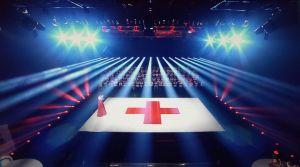 Gala Crucea Rosie 2013