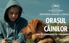 Orașul câinilor, propunerea Ungariei la Oscar 2015, difuzat în cinematografele din România – VIDEO