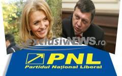 Teodor Atanasiu s-a retras din cursa pentru șefia PNL ca să-i facă loc Alinei Gorghiu, susținută de Iohannis