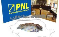 PNL a contestat la CCR, legea bugetului de stat pe 2015