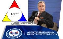 Havrileț Niculae, președinte ANRE, găsit incompatibil de ANI