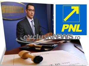 pnl - ponta - alegeri