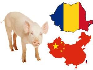 romania export carne porc china