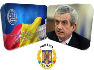 ccr-tariceanu - senat