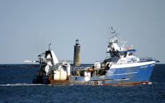Tragedie în largul coastelor libiene. 700 de imigranți au murit în urma unui naufragiu