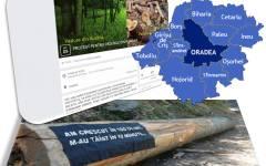 Orădenii ies în stradă ca să protesteze împotriva tăierii masive a pădurilor din România