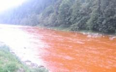Catastrofă ecologică pe râul Bistrița. Peste un MILION de litri de substanţe TOXICE au ajuns în apă