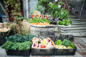 ziua internationala a alimentatiei