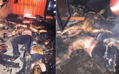 Mărturie cutremurătoare din Colectiv: Focul le topise feţele, carnea căzuse până la os şi nu mai aveau ochi