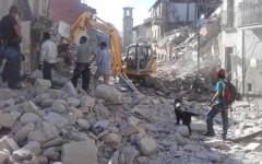 Crește numărul românilor morți la cutremurul din Italia. 11 români și-au pierdut viața