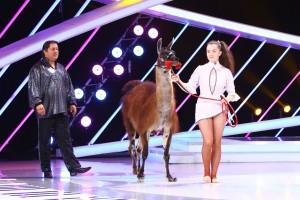 lama-next-star