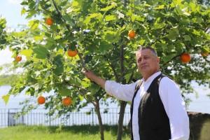 Dinescu si stejarul cu portocale_7668