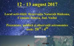 Ploaia de stele căzătoare se vede în România în noaptea de 12 spre 13 august 2017